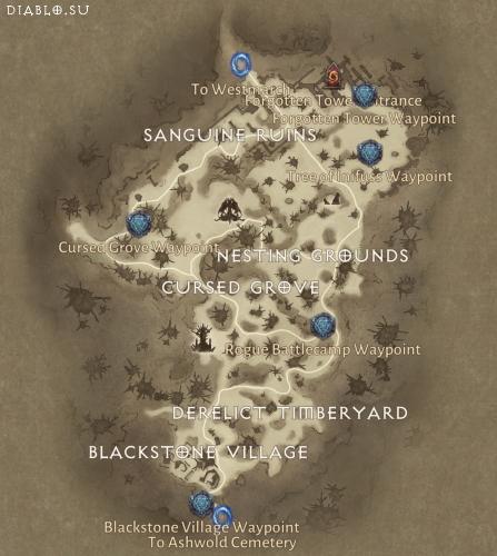Карта локации Темный Лес Diablo Immortal
