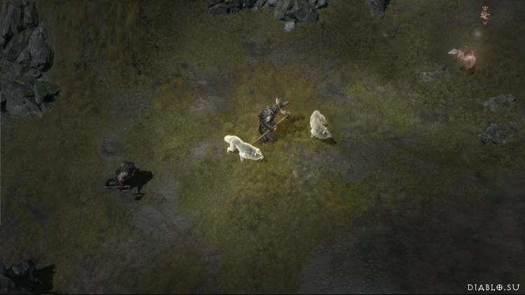 Вызов волков друидом в Диабло 4